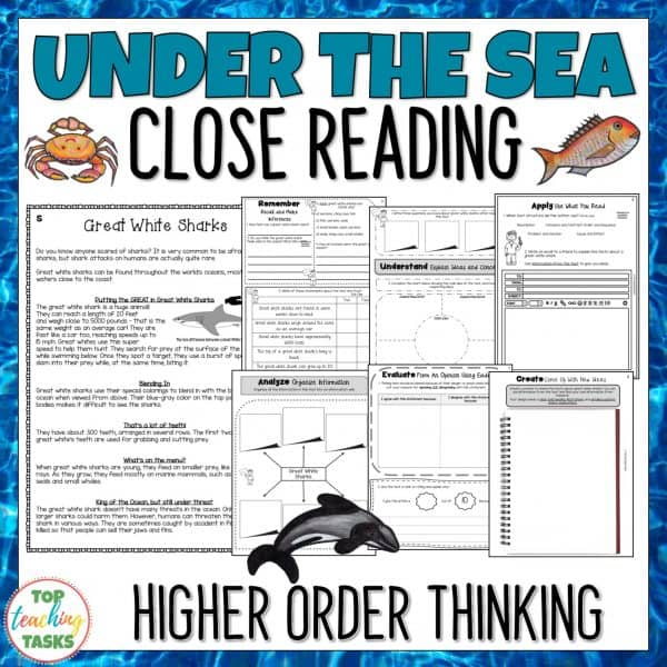 Under the Sea Reading Comprehension Passages and Questions